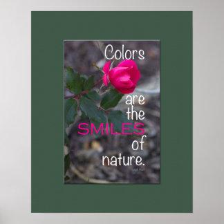 Photographie de recourbement simple de rose de ros poster