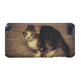 Photographie mignonne de chaton, animal de bébé coque iPod touch 5G