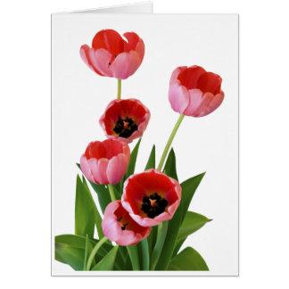 Photographie rose de bouquet de tulipe de ressort carte de vœux