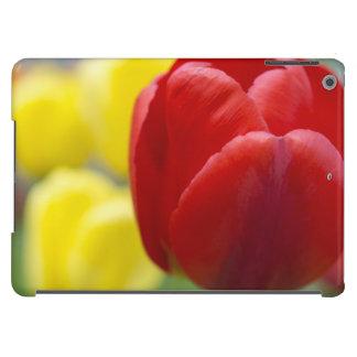 Photographie rouge et jaune de tulipes coque iPad air