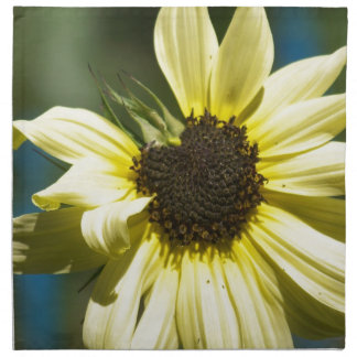 Photographs of a Sunflower on a T Shirts Napkin