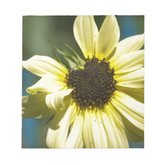 Photographs of a Sunflower on a T Shirts Notepad