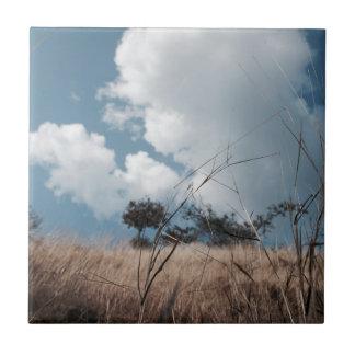 Photography landscape tile