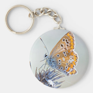 Photography of butterfly on flower of the desert basic round button keychain