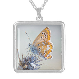 Photography of butterfly on flower of the desert silver plated necklace
