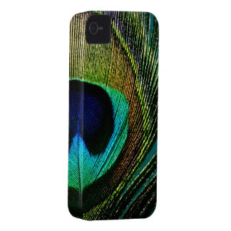 Photography Peacock Feather iPhone 4 CaseMate iPhone 4 Covers
