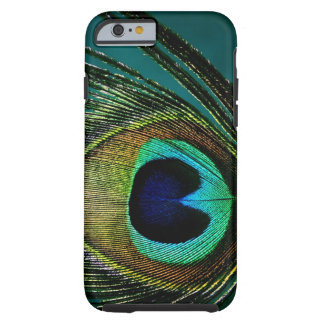 Photography Peacock Feather iPhone 6 case Tough iPhone 6 Case
