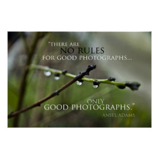 Photography Quote 3 Poster
