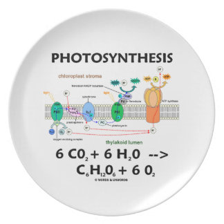 Photosynthesis (Chemical Formula) Plate