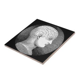 Phrenology Head Diagram Tiles