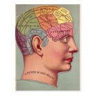 Phrenology Head in Color Postcard