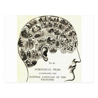 Phrenology Postcard