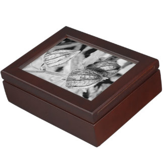 Physalis angulata keepsake box