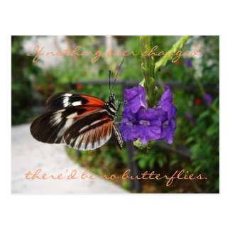 Piano Butterfly Postcard / Quote
