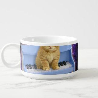 Piano cat bowl