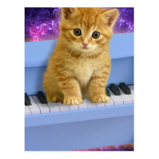 Piano cat postcard