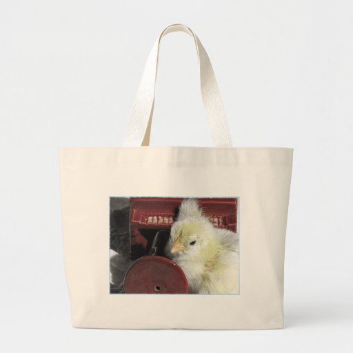 Piano Chick Vintage Look Photo Bag