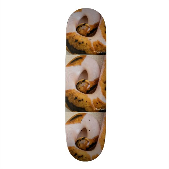 PiCaSSo Custom Skateboard