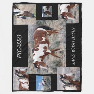 Picasso Icon of Sand Wash Basin,  Colorado Fleece Blanket