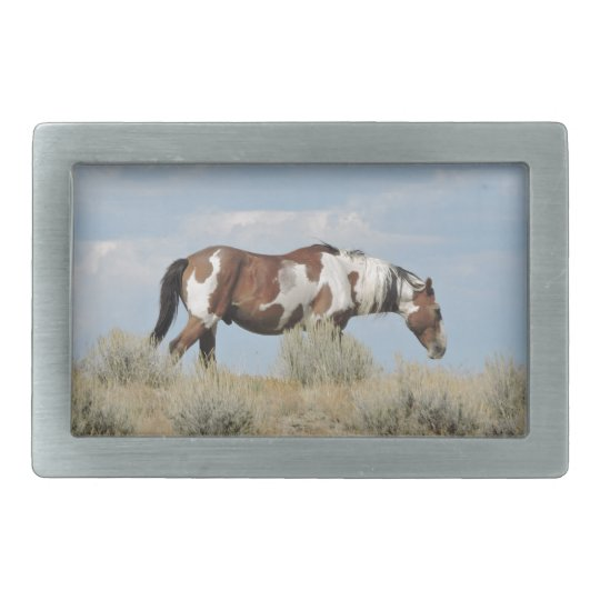 Picasso, Stallion of Sand Wash Basin, Colorado Belt Buckle