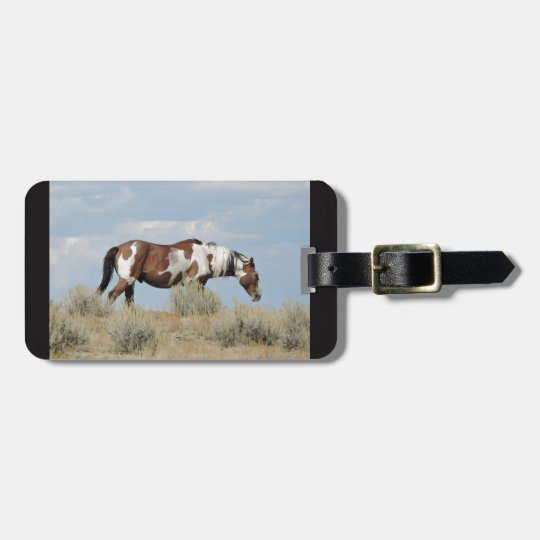 Picasso, Stallion of Sand Wash Basin, Colorado Luggage Tag