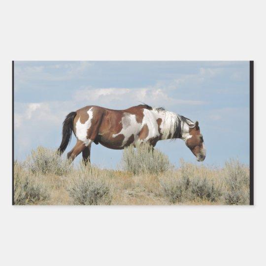 Picasso, Stallion of Sand Wash Basin, Colorado Sticker