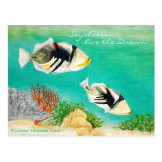 Picasso Trigger Fish Postcard