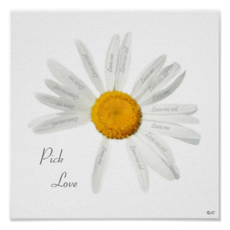 Pick Love Daisy Poster