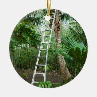 Picking fresh coconuts round ceramic ornament