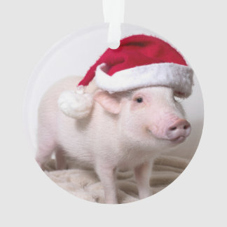 Pickle the Mini Pig Christmas Ornament