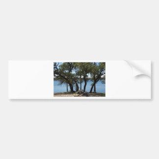 Picnic at the Lake Bumper Sticker