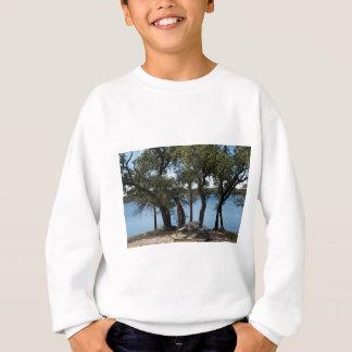 Picnic at the Lake Sweatshirt
