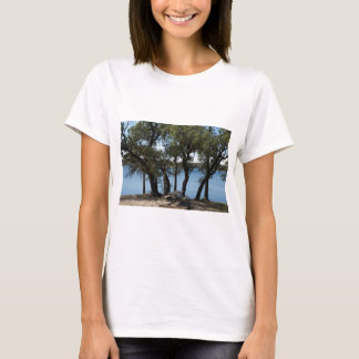 Picnic at the Lake T-Shirt