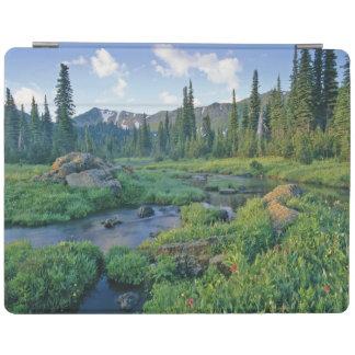 Picnic Creek in the Jewel Basin of the Swan iPad Cover