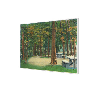 Picnic Grounds View of Saratoga Battlefield Gallery Wrapped Canvas