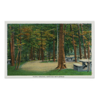 Picnic Grounds View of Saratoga Battlefield Poster