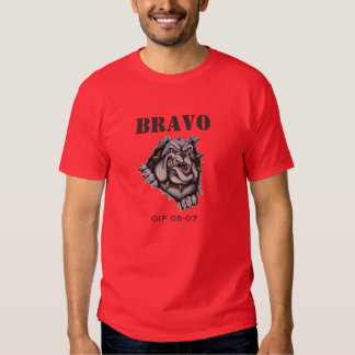 Picture1, BRAVO, OIF 05-07 T-shirts