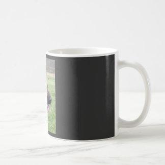 Picture_0317, Loyalty, Devotion, LoveMy German ... Basic White Mug