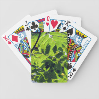 PICTURE 127 BICYCLE PLAYING CARDS