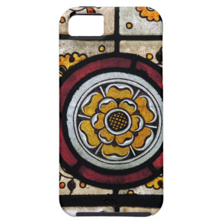 PICTURE 130 iPhone 5 CASE