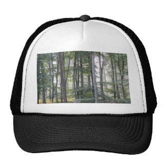 PICTURE 131 TRUCKER HAT