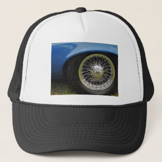 PICTURE 202 TRUCKER HAT
