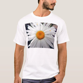 PICTURE 253 T-Shirt