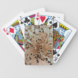 PICTURE 40 BICYCLE PLAYING CARDS