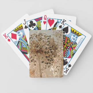 PICTURE 43 BICYCLE PLAYING CARDS