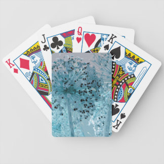 PICTURE 44 BICYCLE PLAYING CARDS