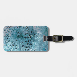 PICTURE 44 LUGGAGE TAG