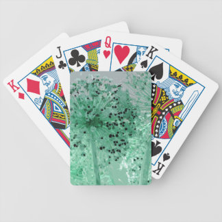 PICTURE 45 BICYCLE PLAYING CARDS
