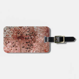 PICTURE 46 LUGGAGE TAG