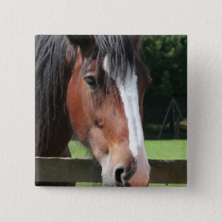 Picture of a Quarter Horse Square Pin